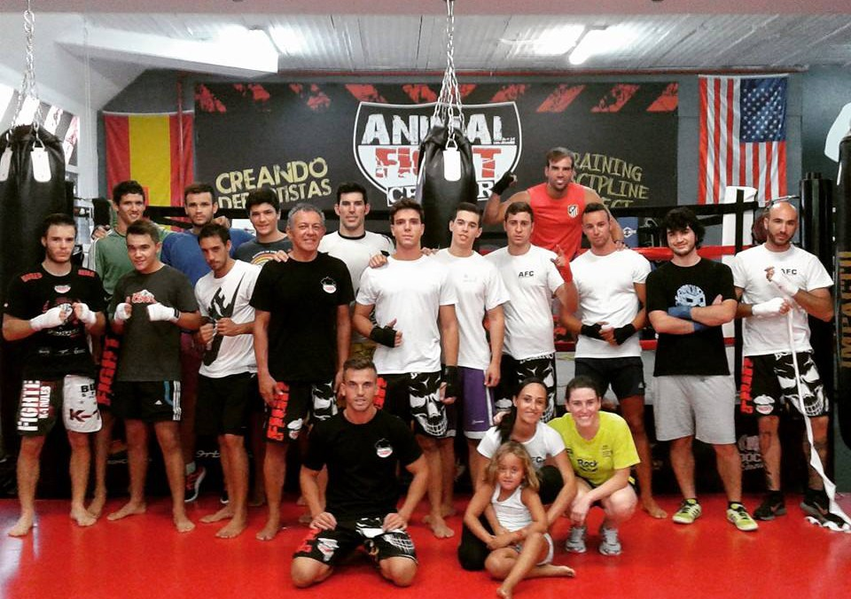 Animal Fight Family