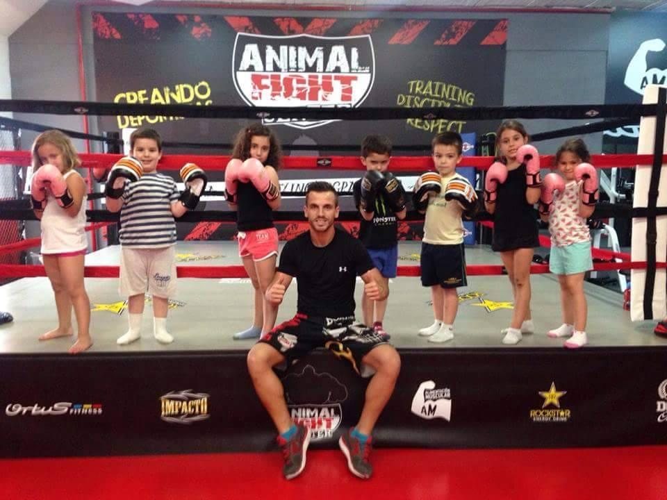 Animal Fight Kids