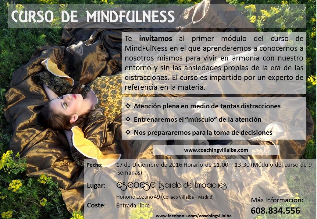 Curso de MindFulness en Villalba