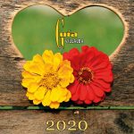Guía Villalba 2020