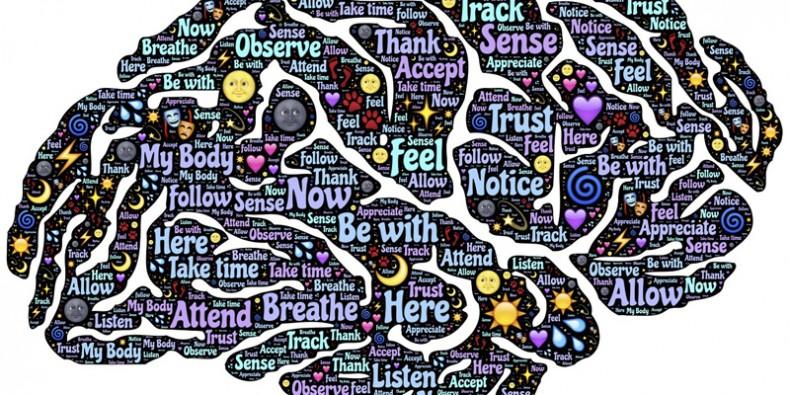 Descubriendo el Mindfulness